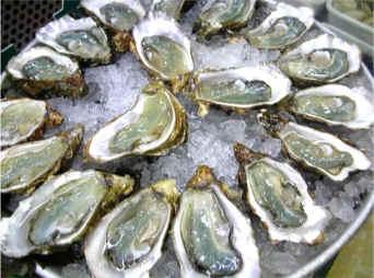 Ostras a la francesa receta fotografiada de cocina for Cocinar ostras